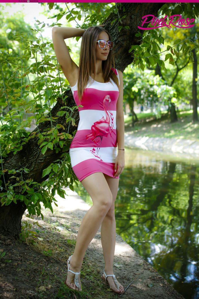 Pink Rose 20
